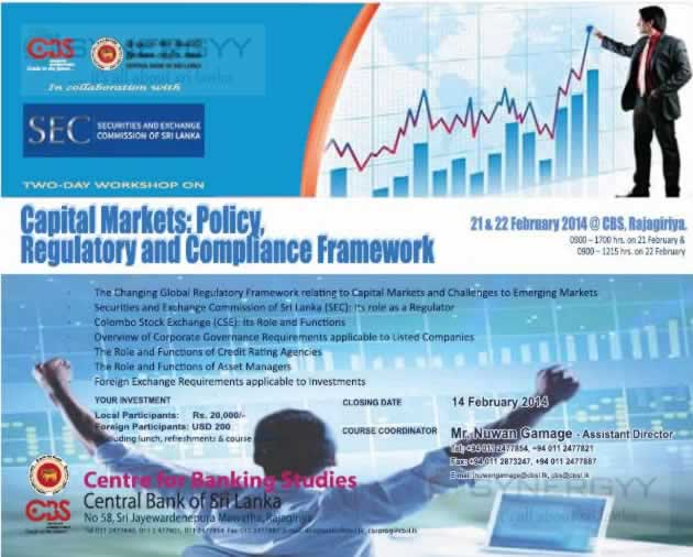 capital markets and corporate governance role Promoting domestic and regional capital markets growth it is also in recognition  of the role of good governance in corporate performance, capital formation and.