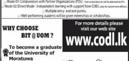 Bachelor of Information Technology (BIT) External Degree by University of Moratuwa – Application Calls now