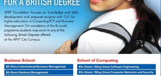 API IT Foundation Degree Programme