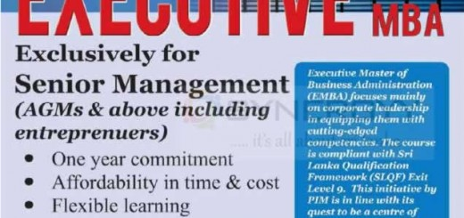 PIM Executive MBA