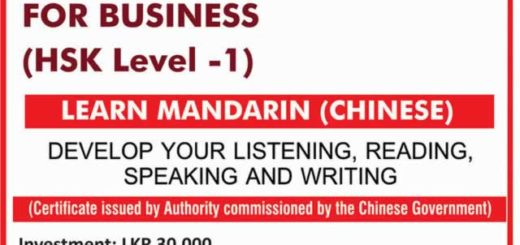 Chinese Language for Business – Learn Chinese from Asian International Academy