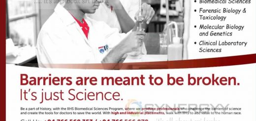 Bachelor's degree in Bio Scheme from IIHS