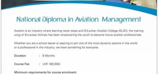 National Diploma in Aviation Management